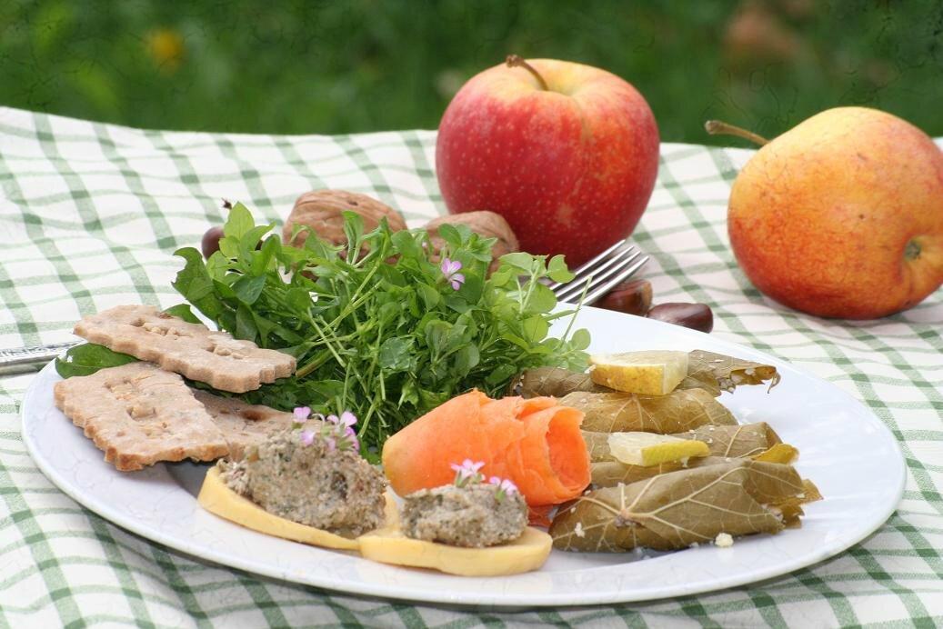 Journ e plantes sauvages comestibles les fruits d - Cuisine plantes sauvages comestibles ...