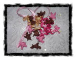 curly_gardenias_fleurs_froiss_es