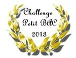 0 Challenge Petit Bac 2013-001
