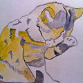 Aquarelle chat, cat in watercolour