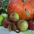 récolte d'automne