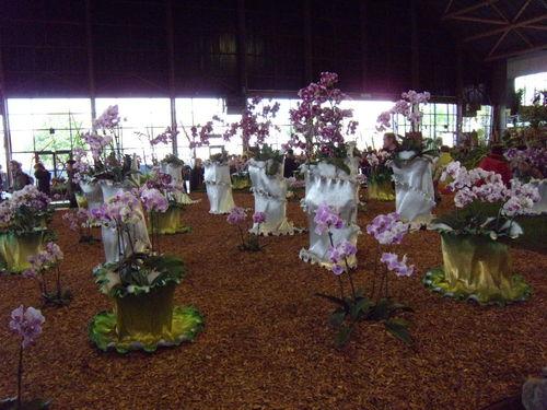 Floralies 140
