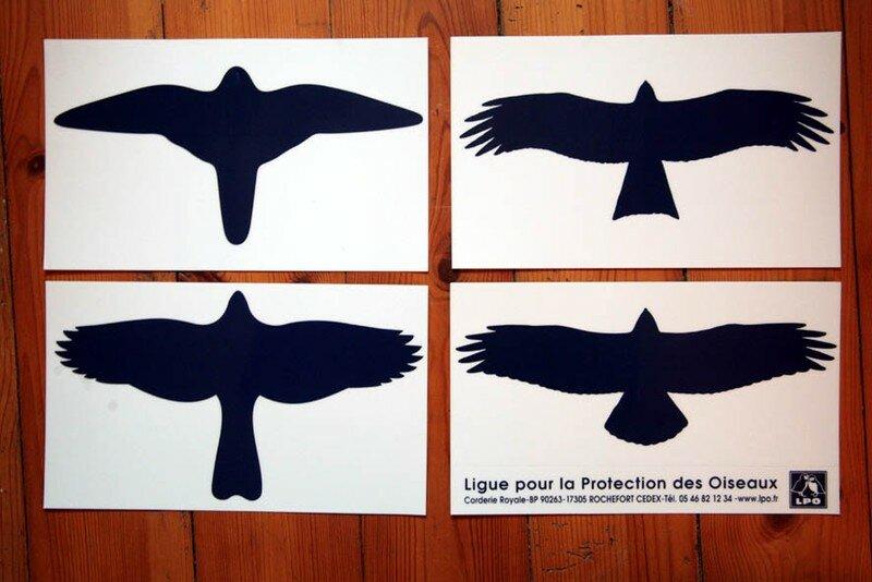 Lpo la maison bois - Faire peur aux oiseaux jardin ...