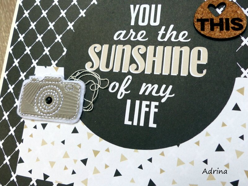 mini you are the sunshine-tag taupe