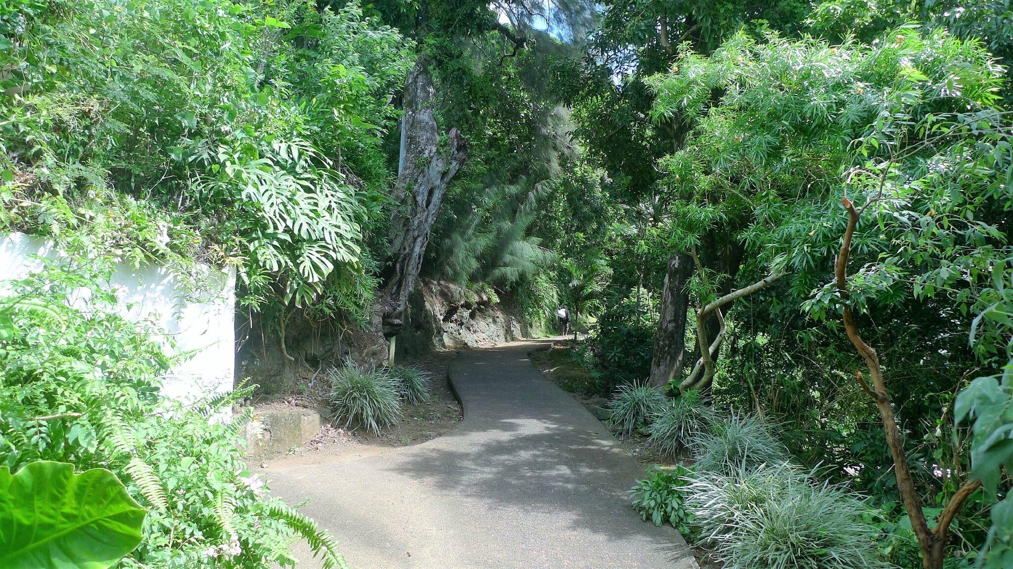 STE-SUZANNE : 3/6 Cascade les Délices à la Réunion - Chanson Réunion - Poésie - Blagues - Recette