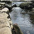 Une croisière sur une rivière creusoise, ça vous tente ?