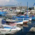 Le port de pêche d'Ajaccio