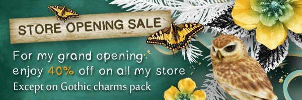 GB_store_opening_sale_ban