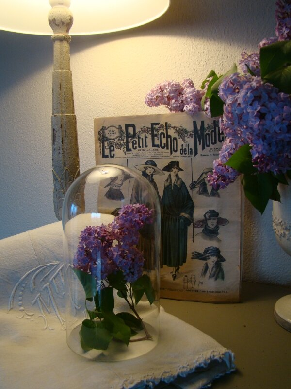 lilas, le temps d'une photo...