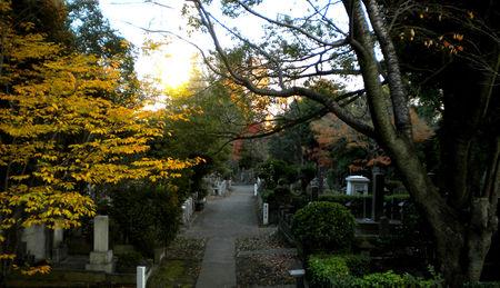 living_cemetery_2