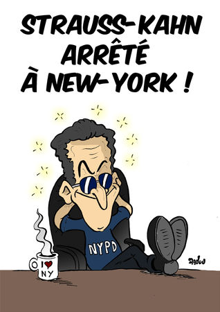 dsk_arrete_a_new_york_net
