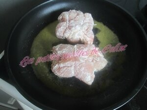 Escalopes de dinde farcies23