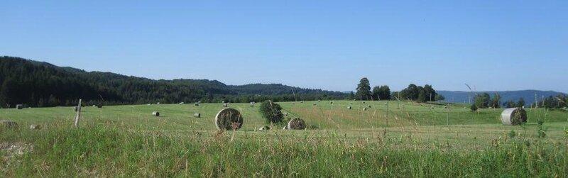 108 - plateau du Retord - Ve 16 juil 2010