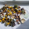 Les trésors de la plage