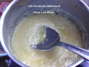 TUILE_A_LA_P_CHE_0