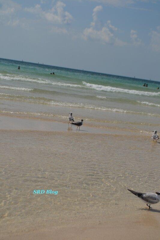South_beach_3