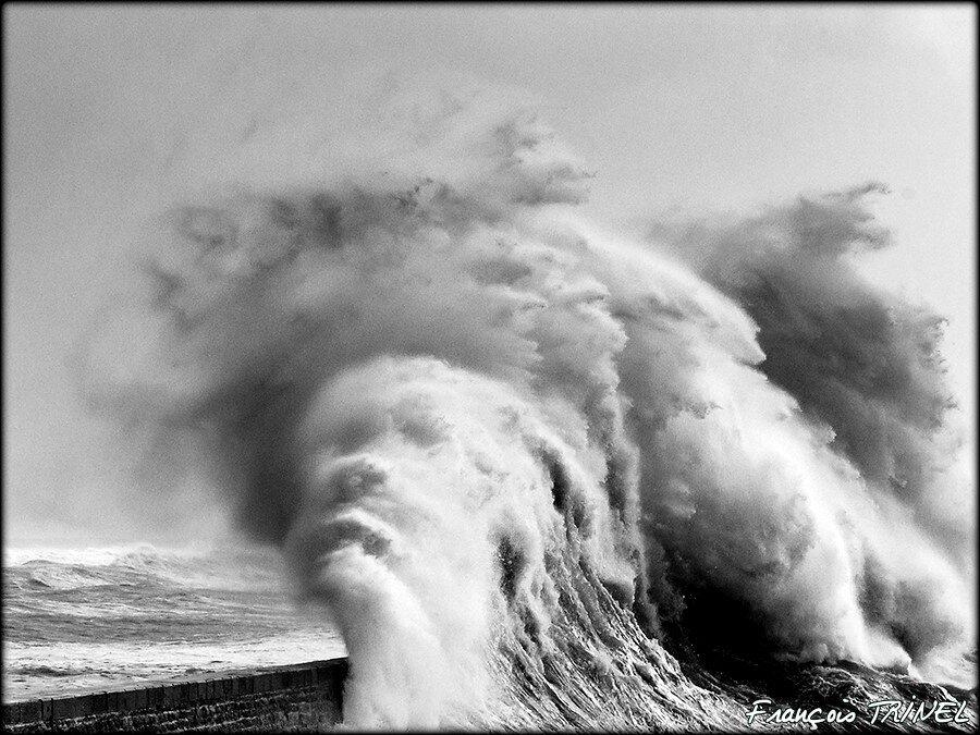 FRANCOIS TRINEL PHOTOGRAPHE !...