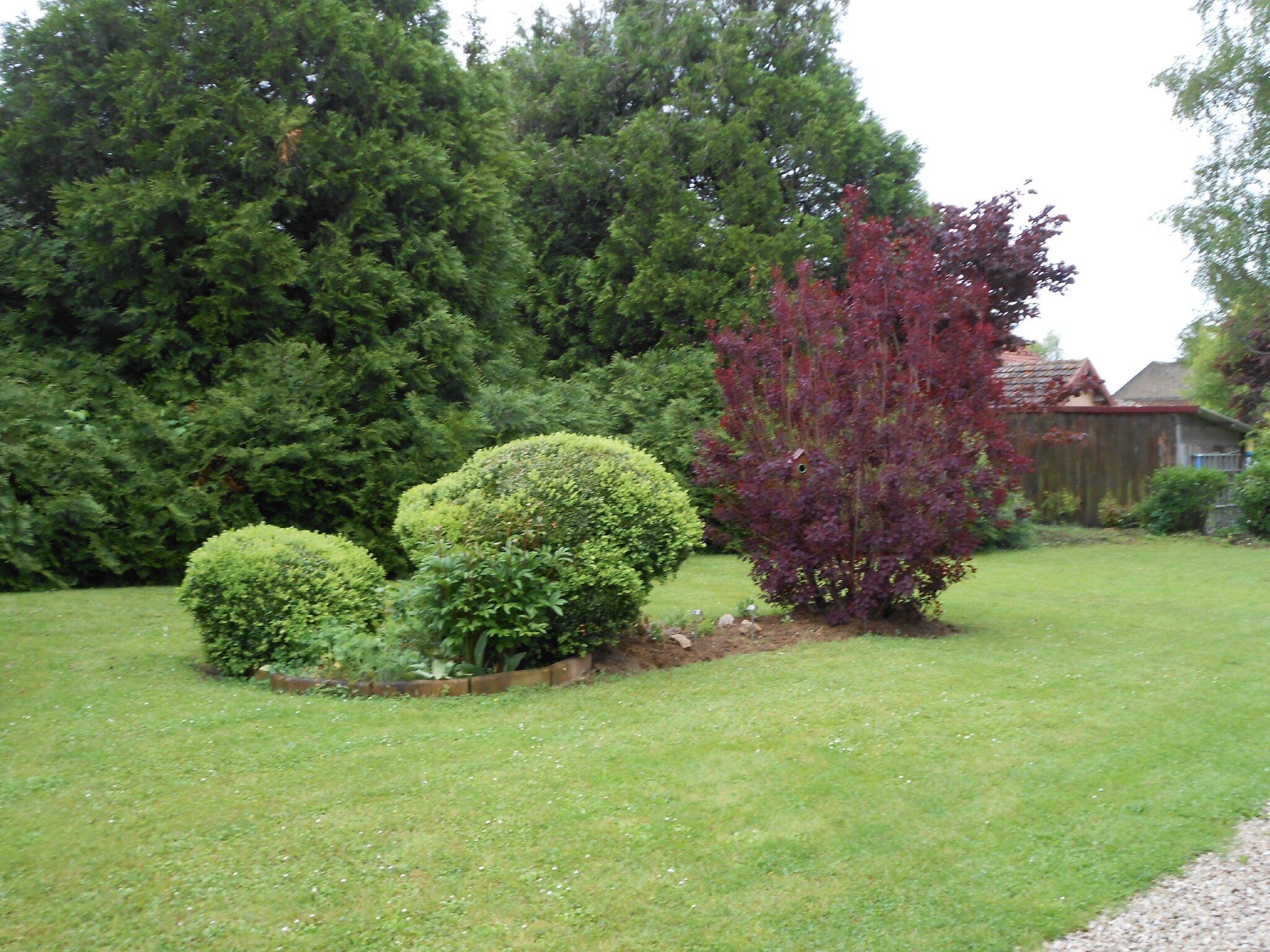 Un nouveau parterre le jardin de cruik les fleurs for Arbustes de jardin