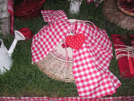 table_picnic_005