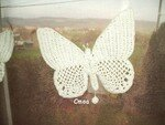 d_tail_papillon_crochet_