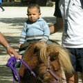 sofiane fait du poney
