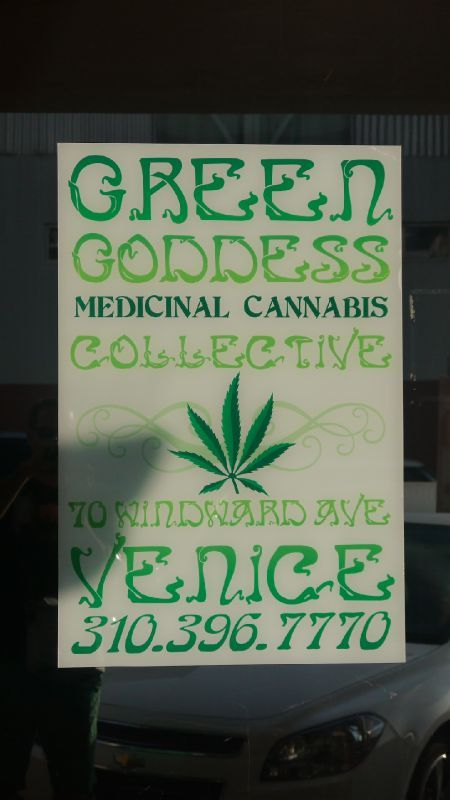 cannabis Venice Beach