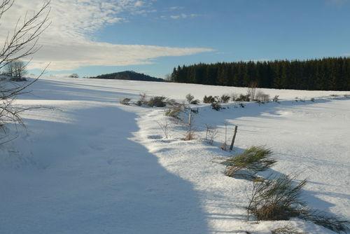 2008 12 30 Sur un chemin de neige en direction de freycenet