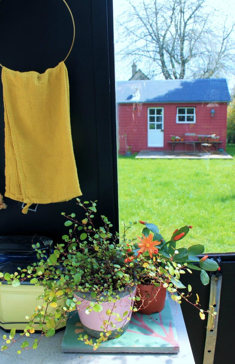 la m re de la mule. Black Bedroom Furniture Sets. Home Design Ideas
