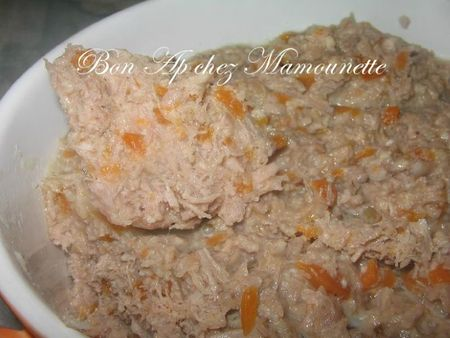 Rillettes de canard 017