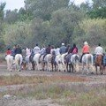 CAMARGUE 29-09-2007 09-32-36