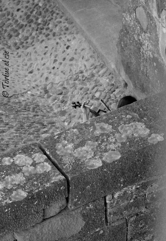 3-ViolonEnchanteurCarcassonne_TortueetCie