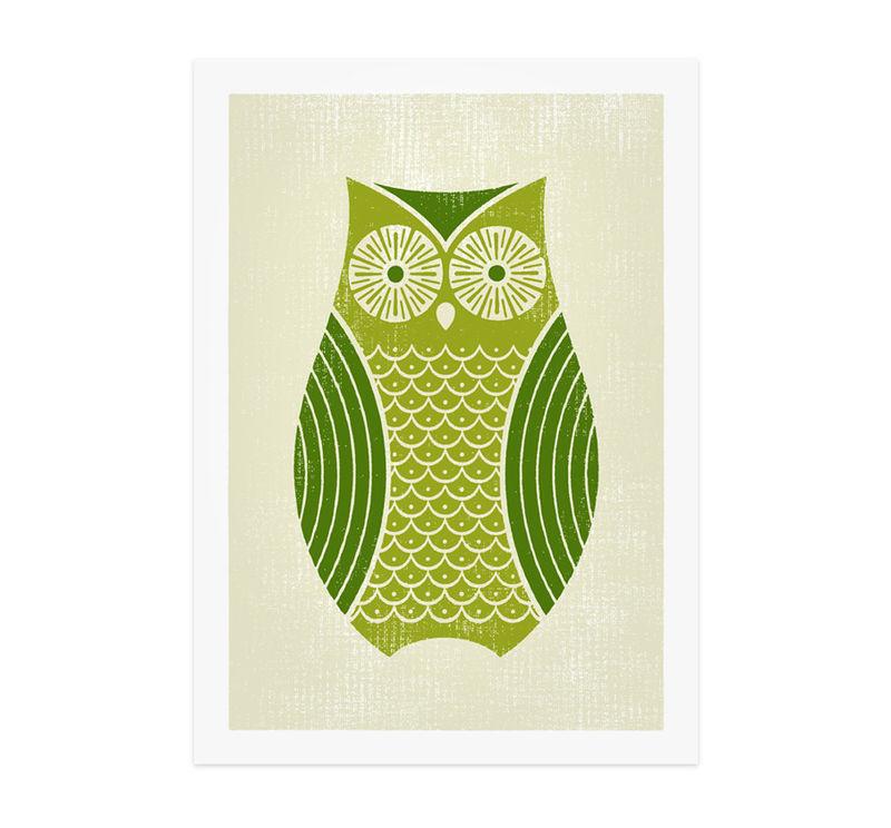owl_905