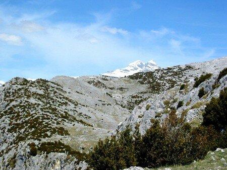 013_Le_sommet__enneig__du_Mont_Perdu
