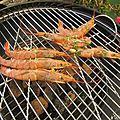 Brochettes de crevettes grillées au charbon de bois