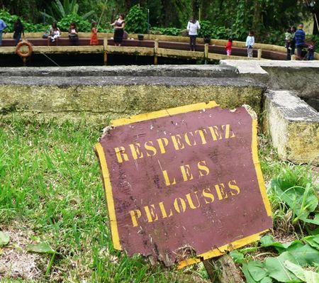 9_RESPECTER_LES_PELOUSES_A_L_ENTRE_PARC_TRUITES