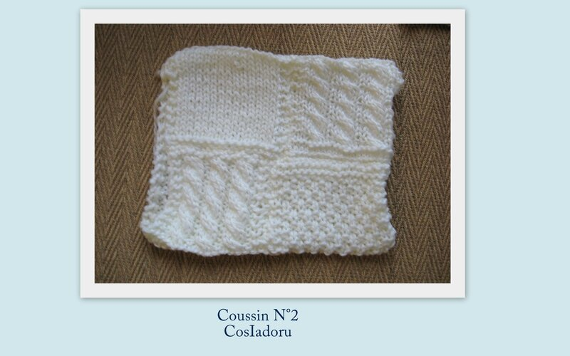 coussin N°2b