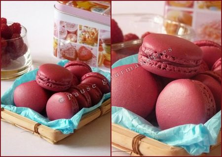 Macarons à la framboise (20)