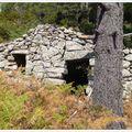 Caseddu, hameau d'Altitude, Transhumances...