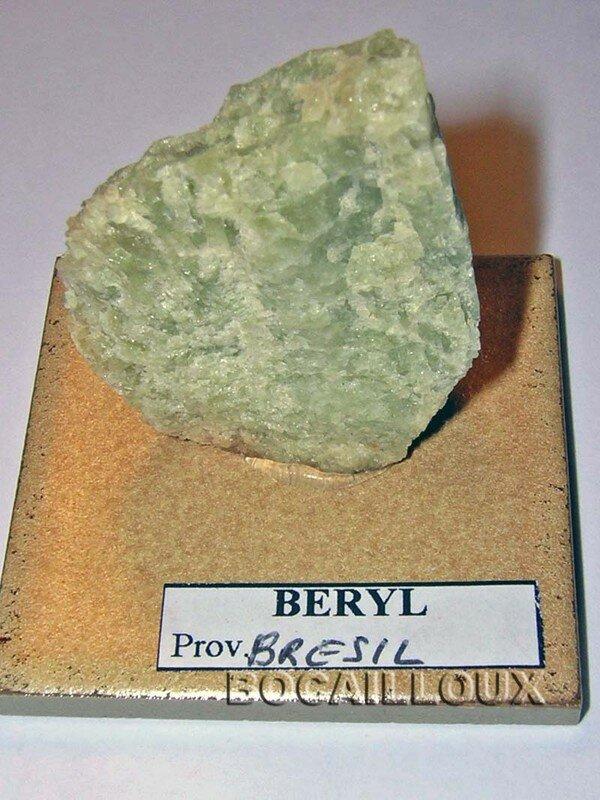 BERYL S1124