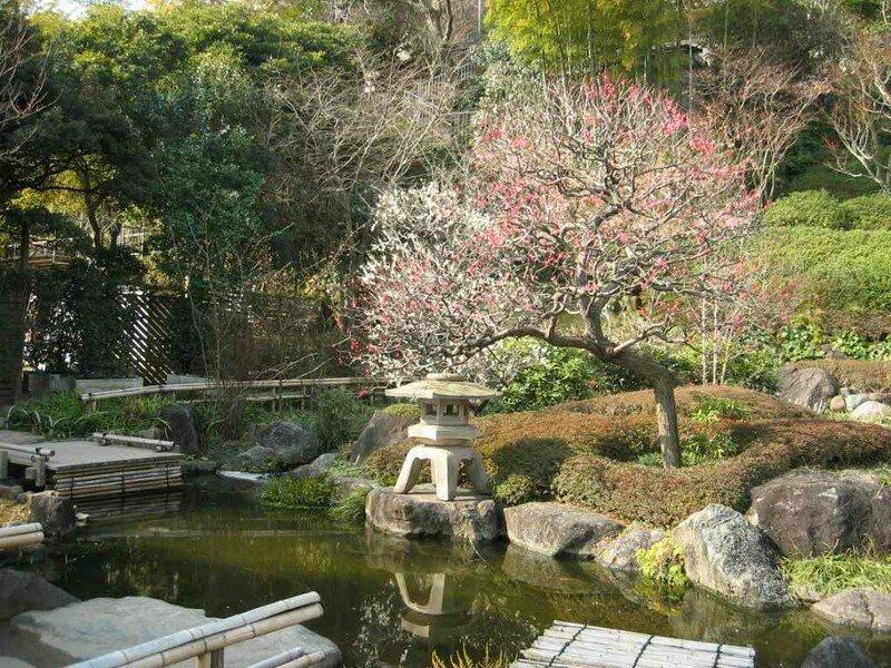 Kamakura randorif for Jardin 41 rue du temple
