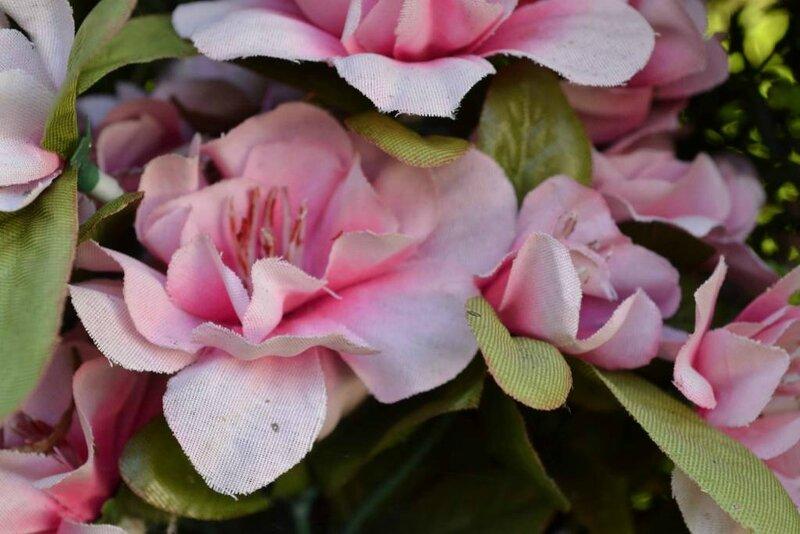 fleurs lecluse (7)