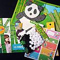 Activités: on adopte un panda avec pandacraft