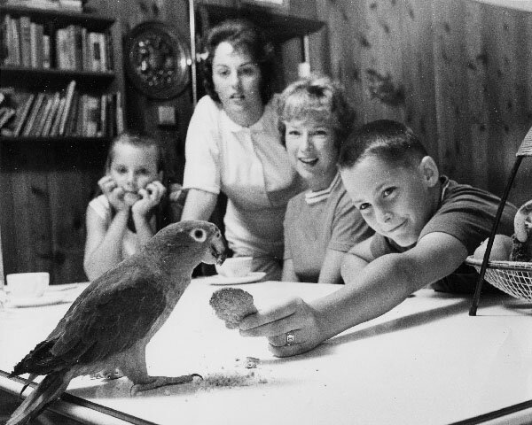 Robin, Gail, Mary Ellen, and Mark athome with Poopdeck (1962)