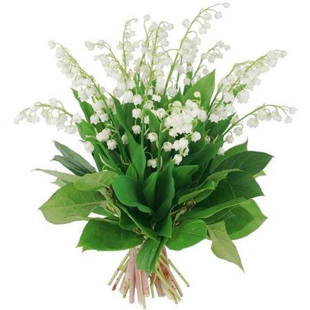 bouquet-muguet-eve