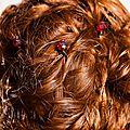 Pic cheveux CLARA