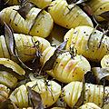 Hasselbackpotatis les pommes de terre à la suédoise cuites au four
