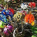 fleurs éternelles pour alice