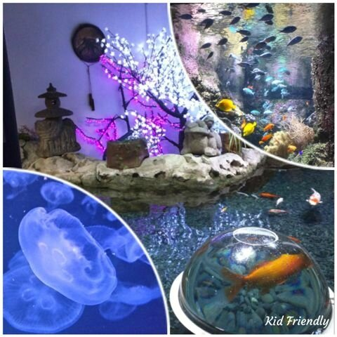 Aquarium de Paris ©Kid Friendly
