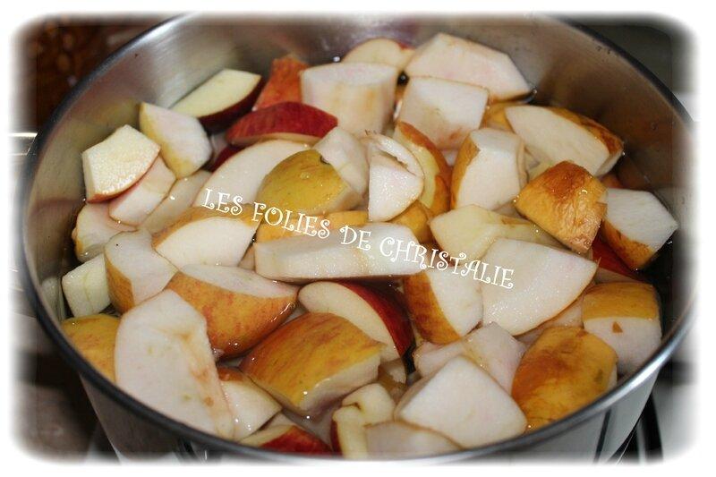 Gelée de pommes 2