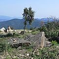 dolmens des Terriers (5)